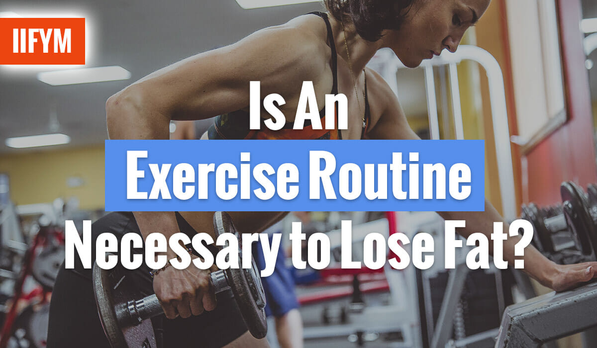 Is An Exercise Routine Necessary to Lose Fat?