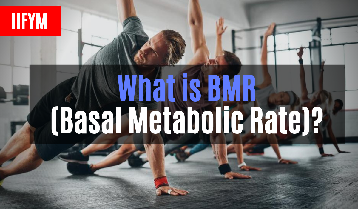 what is bmr basal metabolic rate